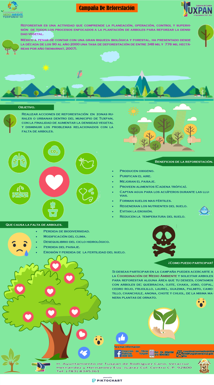 Campaña de Reforestacion